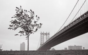 manhattanbridge01b