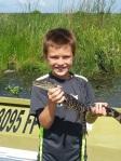 alastair aligator