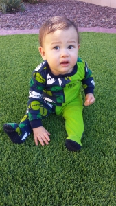 Cole isn't sure what to think about Nana and Papa's artificial grass.