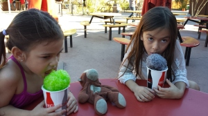 Mylee and Kaiya enjoy their sno cones during our visit to the Phoenix Zoo.