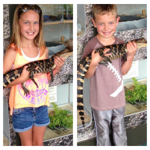 What's a kid supposed to do when they're in Florida besides hold an alligator? My great niece and nephew Mackenzie and Carter display the reptiles.