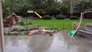 back yard rain 2015