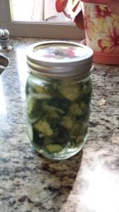 leonas refrigerator pickles