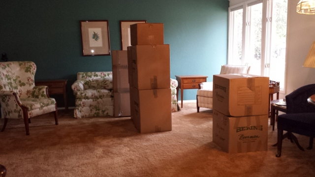 living room with boxes