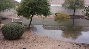 Rain Ditch 2