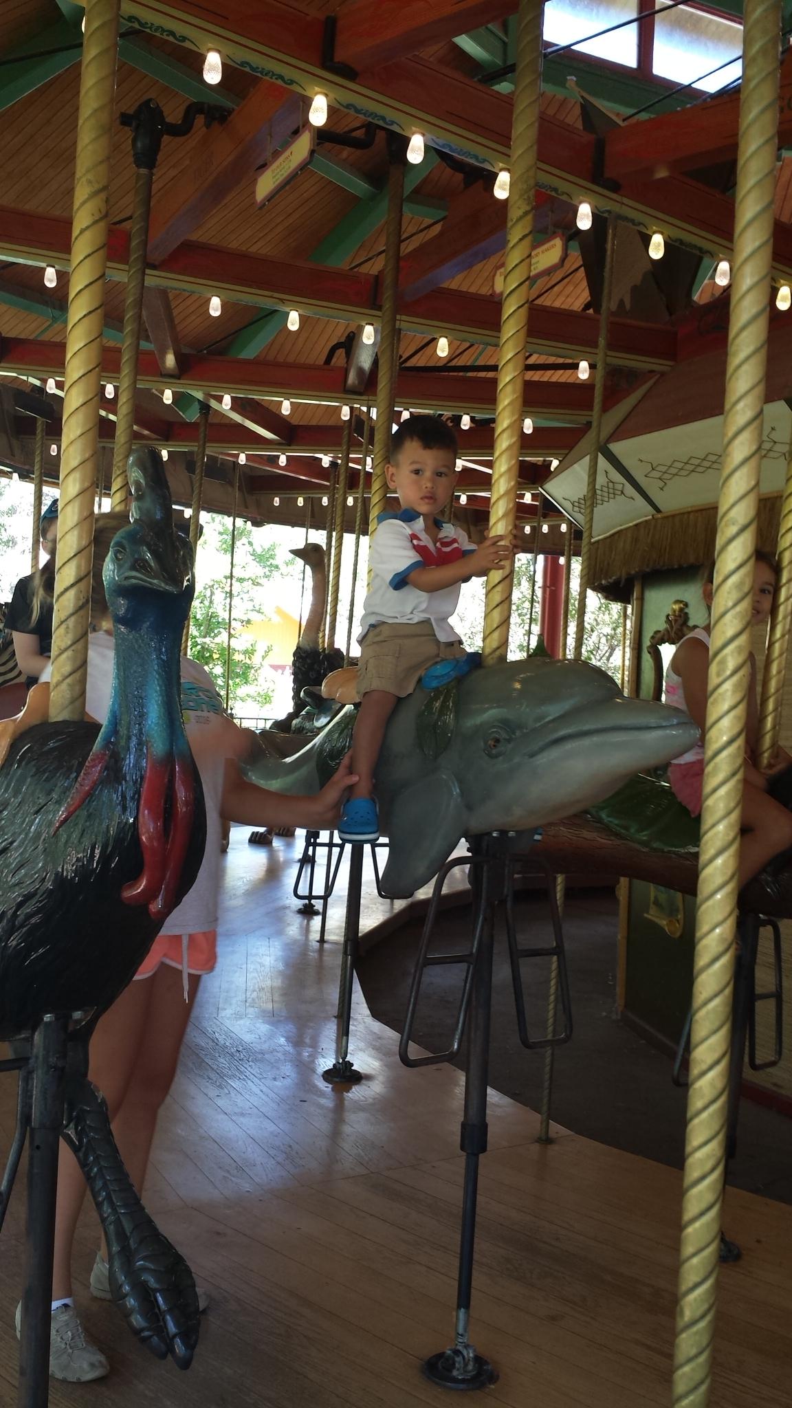 Cole on carousel